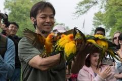 Phung-Luu-Flighted-Birds-Demo